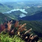Tour du lịch tham quan Bạch Mã 1 ngày giá rẻ