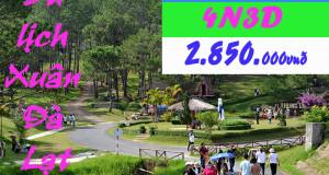 Tour tết 2015 – Du lịch Đà Lạt mộng mơ (4N3D)