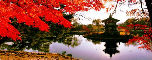 seoul-korea-travel-guide