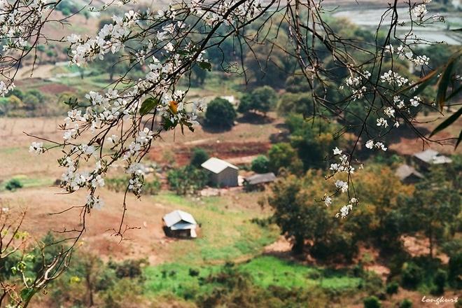 Điện Biên Cho thuê xe miền trung