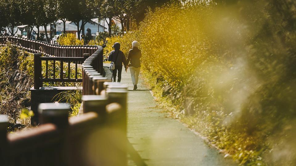 Khám phá đảo Jeju – hòn đảo thiên đường của Hàn Quốc