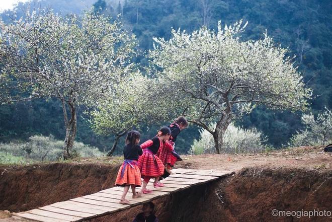 Hà Nội - Mộc Châu Cho thuê xe miền trung